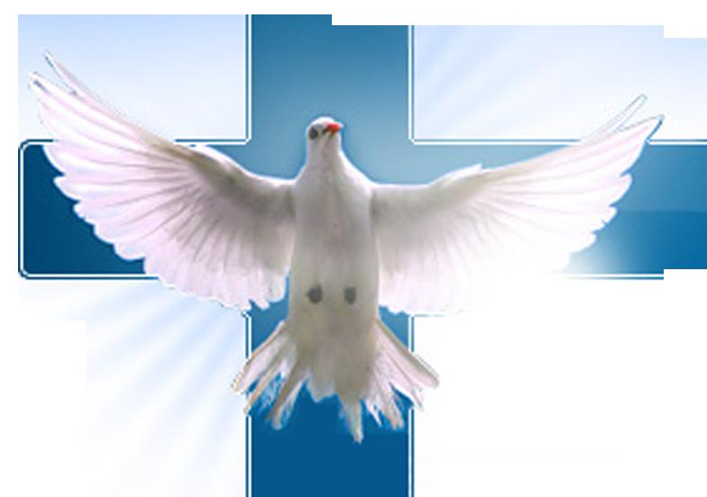 Novéna k Duchu svatému 7. den: Abba, Otče!