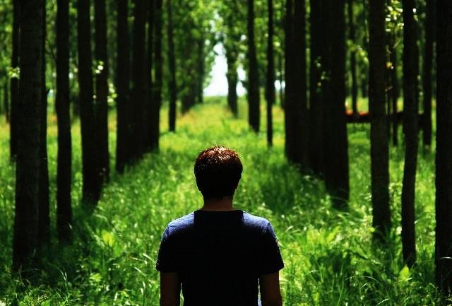 Člověk potřebuje hledat a nalézat smysl života